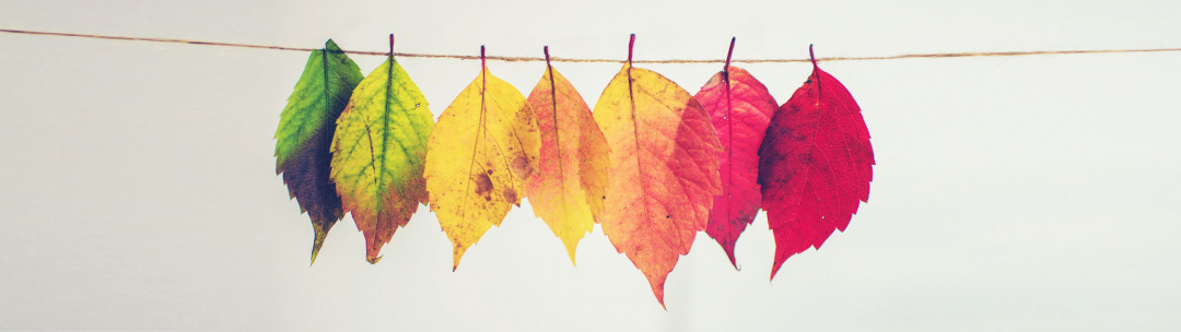 How Seasonal Changes Can Affect Your Diabetes Routine