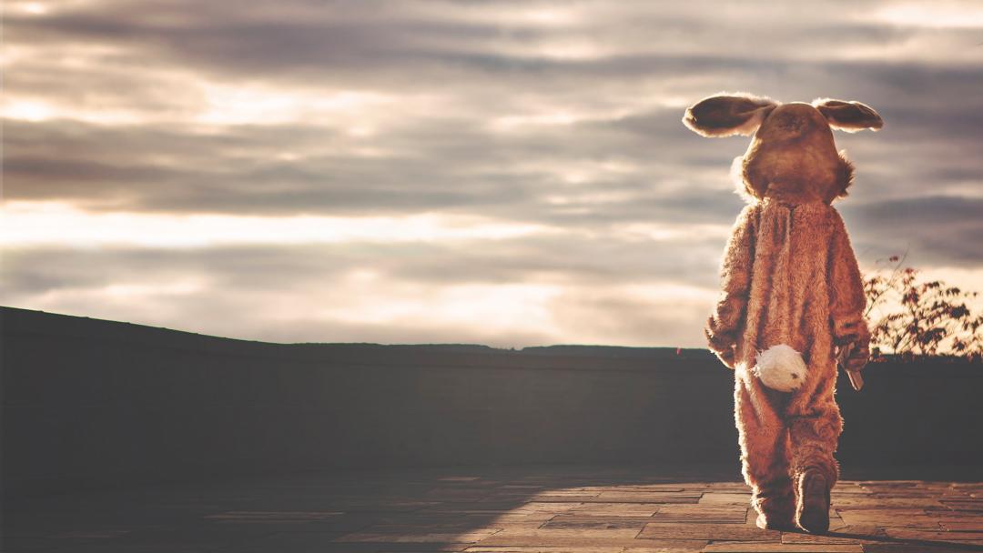 Schokolade und Diabetes - das Geheimnis hinter dem Vollmilch-Hasen